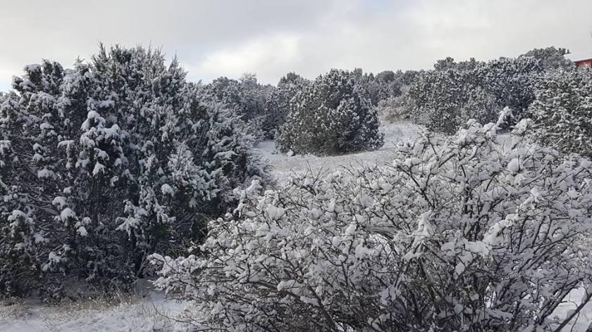 winter outland....
